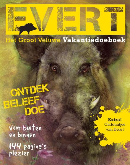 cover Evert. Het Groot Veluwe Vakantiedoeboek.